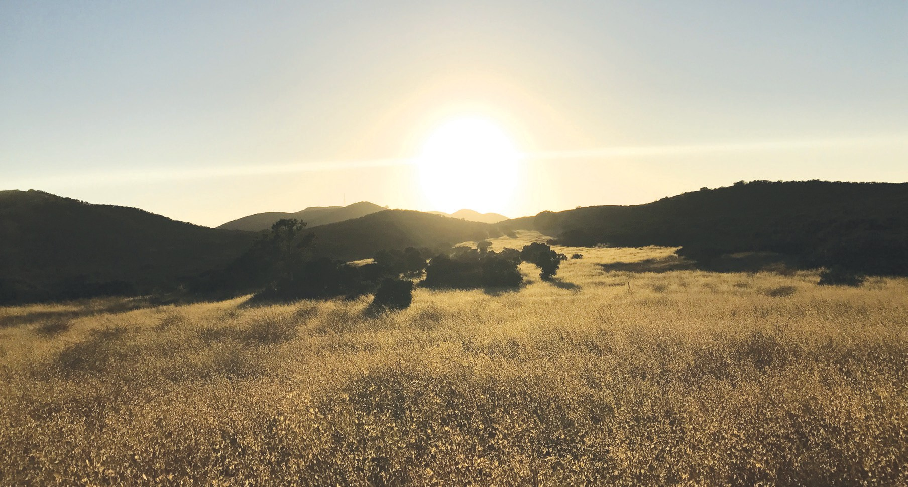 AWE-INSPIRING—The Los Robles Trail provides panoramic views of Thousand Oaks and travels through areas frequented by deer, rabbits, California quail and migrating birds. DAWN MEGLI-THUNA/Acorn Newspapers