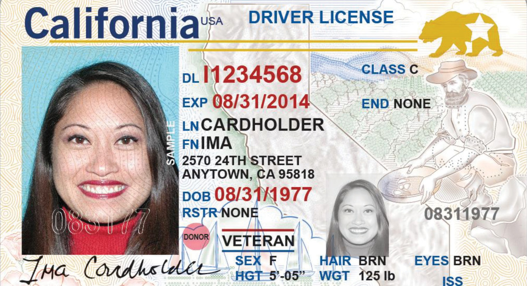 CARDED—The DMV issued this example of what the new federally compliant driver's license looks like.