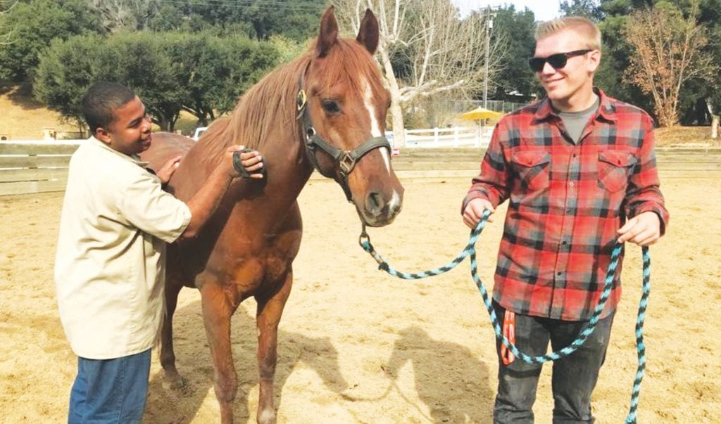 NEIGH-SAYERS—One of the volunteer youth, a Westlake resident, Phil, at right, keeps Freddy the horse steady while a participant grooms him during ELSA's Ranch Skills class. Courtesy photo