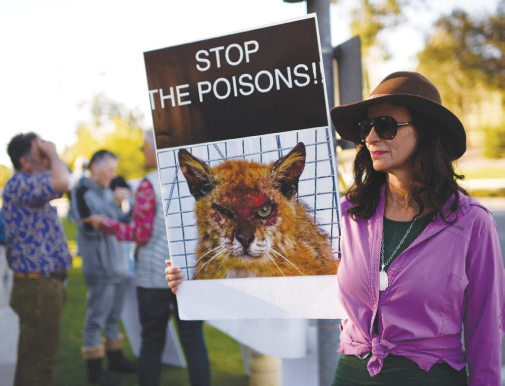 WARNING—Calabasas resident Helena Kriel protests the use of rodenticides in the Westridge neighborhood. She said her dog once ingested rat poison and had to be saved at an animal hospital. MICHAEL COONS/Acorn Newspapers