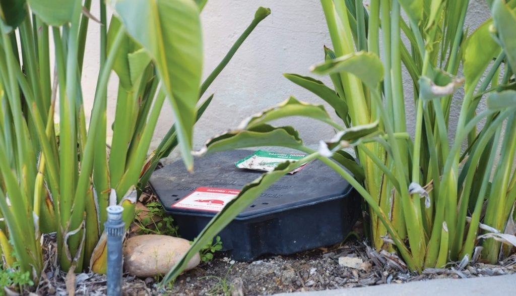 END OF THE LINE—This bait box for rats was seen at the entrance to the Westridge Estates. A group of residents is trying to get the gated community to stop using the boxes and their dangerous rodenticide. MICHAEL COONS/Acorn Newspapers