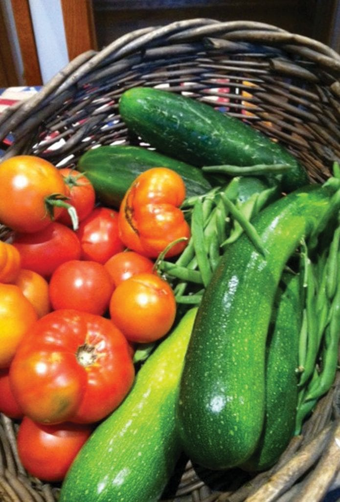 GOOD TO EAT—Parcels are available at the Oak Park Community Garden where residents can plant vegetables andflowers. Courtesy photo