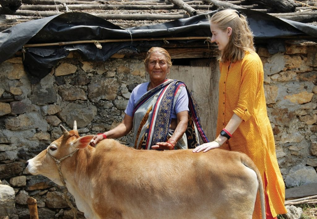 MAKING A MOOOOVE—Juliet Risko, above right and below, is taking part in a study-abroad program in India. She spent three months based in New Delhi, where she lived with a host family. Animals, particularly the cow shown above, are held in high esteem in India. Courtesy photo
