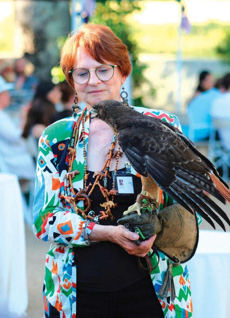 GETTING A HANDLE ON NATURE—Santa Monica Mountains Fund volunteer Cynthia Maxwell shows off Lancelot, SAMO's hawk mascot, to the guests at last Sunday's event.