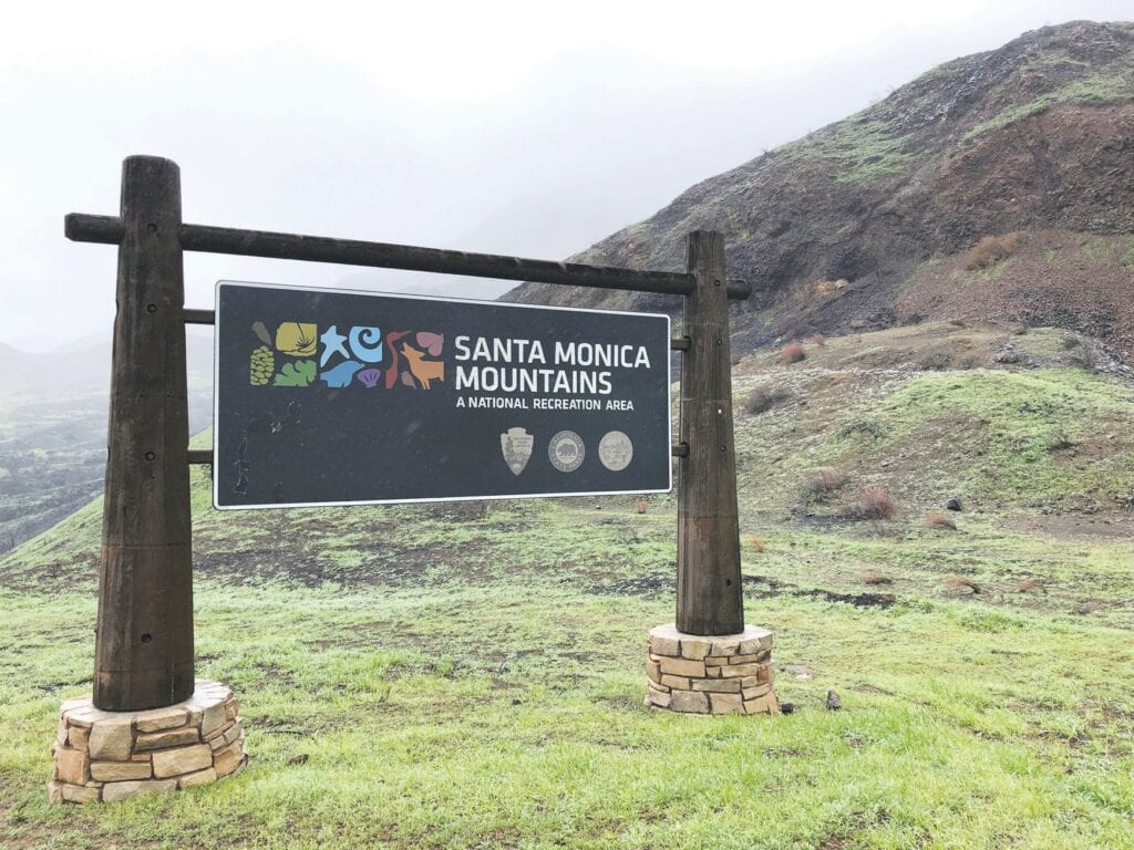 WELCOME HOME—This section of the Santa Monica Mountains near the Conejo Valley at the north end of the park blooms lush and green when the rains come in winter. Acorn file photo
